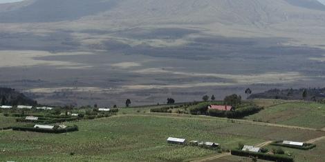 A qui appartiennent les terres au Kenya - fermes dans la vallée du Rift