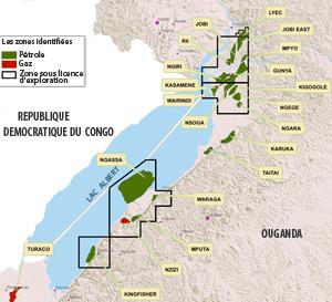 Trois compagnies sont actuellement sur les rangs pour l'exploitation des gisements du lac Albert :Tullow Oil (Etats-Unis), CNOOC (Chine) et Total (France).