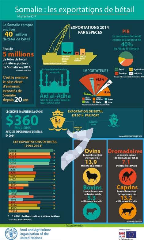 SOMALIE : les exportations de bétail - Points de repères - SOMALIE